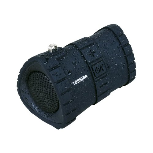 TOSHIBA TY-WSP100-BLK Audio Floating Waterproof Bluetooth Speaker Black