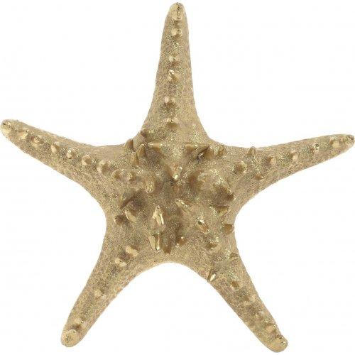 INART 4-70-117-0006 Επιτραπέζιο Διακοσμητικό Αστερίας 21.5x20x5cm 0027969