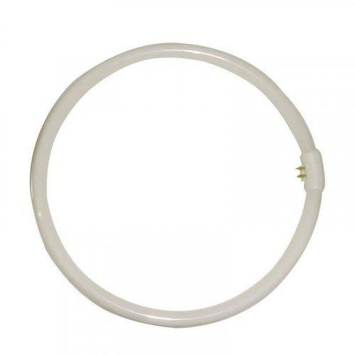 EUROLAMP 147-88636 32W/865 T9 Λαμπτήρας Κυκλικός Φθορίου 0009755
